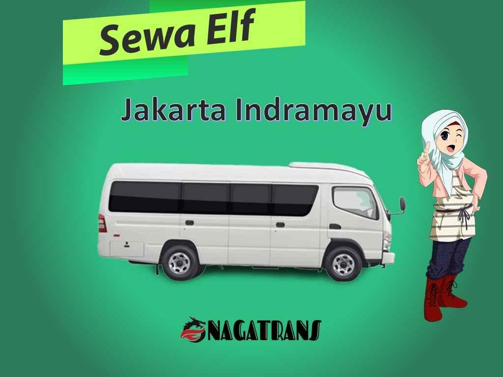 sewa elf Jakarta Indramayu murah